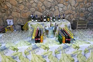 Parties_fiestas_privadas 13